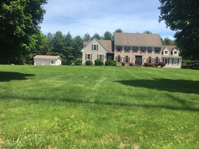 Delaware Twp. Single Family Home For Sale: 3 Green Farm Lane