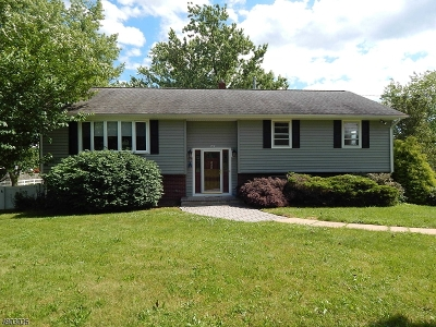 Hillsborough Twp. NJ Single Family Home For Sale: $385,000