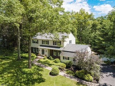 Scotch Plains Twp. Single Family Home For Sale: 2642 Sky Top Dr