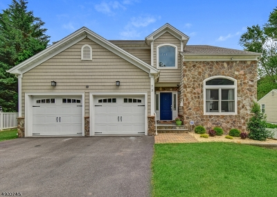 Berkeley Heights Twp. Single Family Home For Sale: 73 Hillside Ave