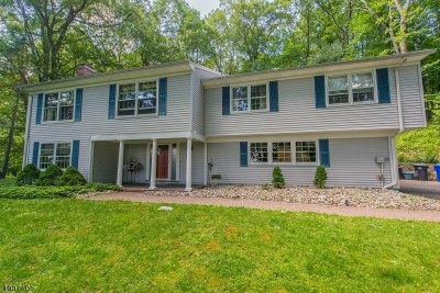 Morristown Town, Morris Twp. Single Family Home For Sale: 57 Raynor Rd