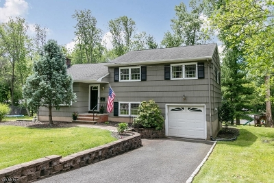 Scotch Plains Twp. Single Family Home For Sale: 1276 White Oak Road