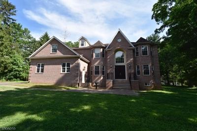 Single Family Home For Sale: 221 Hillside Ave