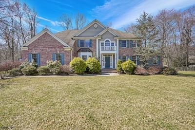 Long Hill Twp Single Family Home For Sale: 30 Elliott Rd
