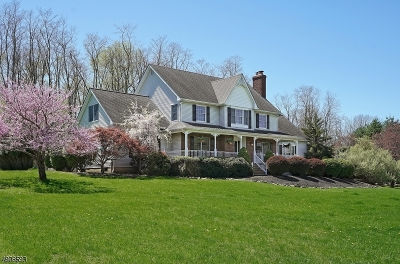 Hunterdon County Single Family Home For Sale: 10 Apgar Farm Rd