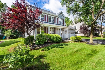 Hunterdon County Single Family Home For Sale: 6 Abraham Rd