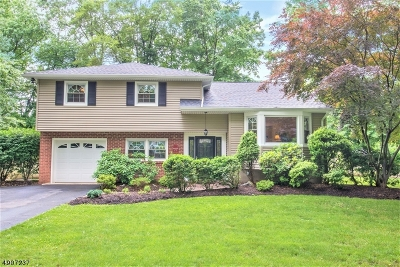 Parsippany-Troy Hills Twp. Single Family Home For Sale: 32 Dolly Dr