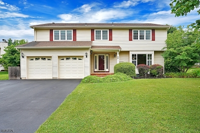 Hunterdon County Single Family Home For Sale: 28 Aberdeen Cir