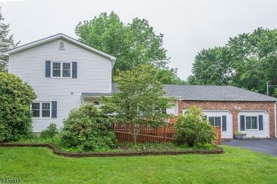 Roxbury Twp. Single Family Home For Sale: 158 S Hillside Ave