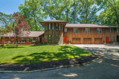 Boonton Twp. Single Family Home For Sale: 577 Rockaway Valley Rd