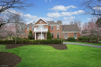 Hunterdon County, Somerset County Single Family Home For Sale: 8 Chesterfield Dr