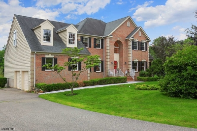 Chester Twp. NJ Single Family Home For Sale: $865,000
