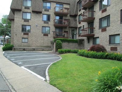 Springfield Twp. Condo/Townhouse For Sale: 190 Morris Ave Unit 3e