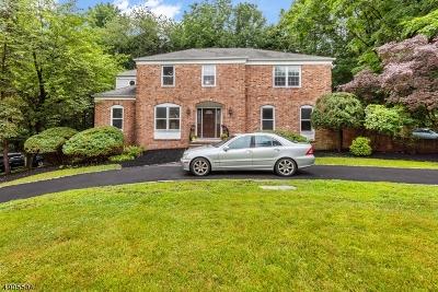 Mountainside Boro Single Family Home For Sale: 138 N Knightsbridge Rd