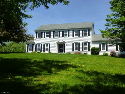 Readington Twp. Single Family Home For Sale: 3 Wren Ln