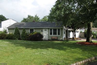 Bridgewater Twp. Single Family Home For Sale: 46 Fairmount Ave