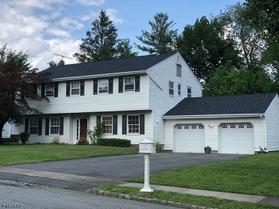 Parsippany-Troy Hills Twp. Single Family Home For Sale: 23 Robert St