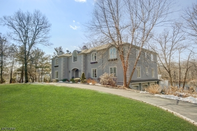 Franklin Lakes Boro Single Family Home For Sale: 272 Terrace Rd