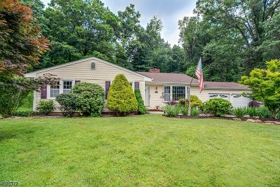 Califon Boro Single Family Home For Sale: 28 Hoffman Dr