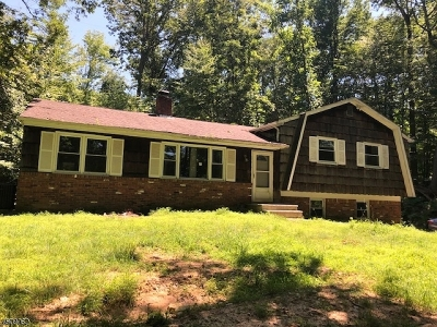Byram Twp. Single Family Home For Sale: 19 Ross Rd