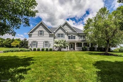 Raritan Twp. Single Family Home For Sale: 2 Groff Ct