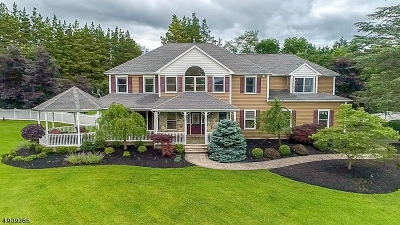 Readington Twp. Single Family Home For Sale: 511 Locust Rd