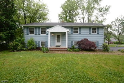 Parsippany-Troy Hills Twp. Single Family Home For Sale: 9 Lord Stirling Dr