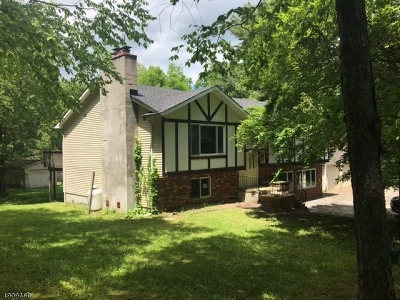 Stillwater Twp. Single Family Home For Sale: 1095 Stillwater Rd
