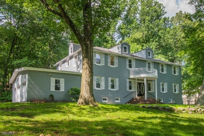 Mount Olive Twp. Single Family Home For Sale: 188 Sand Shore Rd