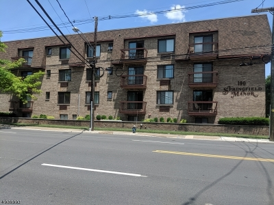 Springfield Twp. Condo/Townhouse For Sale: 190 Morris Avenue - 2g #2G