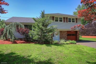 Somerville Boro Single Family Home For Sale: 39 Lisa Ter