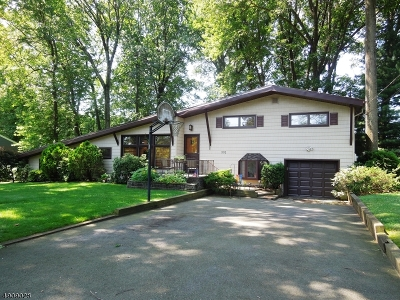 Mountainside Boro Single Family Home For Sale: 301 Cherry Hill Rd