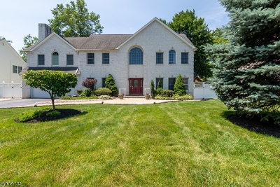 East Hanover Twp. Single Family Home For Sale: 43 Cleveland Ave