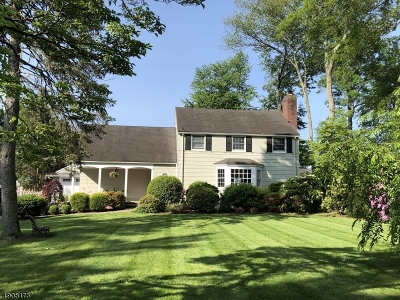 Westfield Town Single Family Home For Sale: 129 Woodland Ave