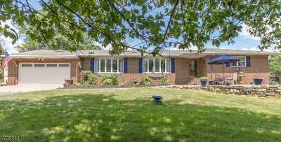Franklin Twp. Single Family Home For Sale: 70 Bickel Rd
