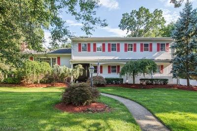 Wayne Twp. Single Family Home For Sale: 27 Chandler Dr