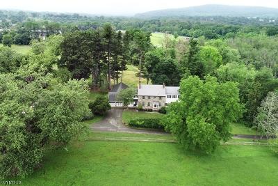 Raritan Twp. Single Family Home For Sale: 157 River Rd