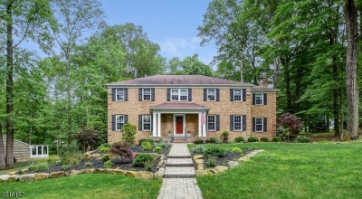 Randolph Twp. Single Family Home For Sale: 12 Rock Ledge Road