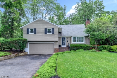 Westfield Town Single Family Home For Sale: 1149 Tice Pl