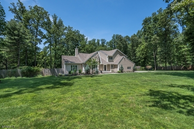 Chester Twp. NJ Single Family Home For Sale: $685,000