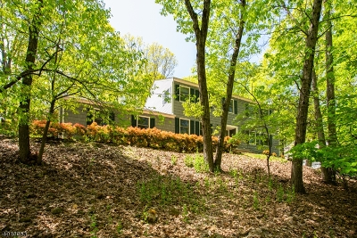 Bridgewater Twp. Single Family Home For Sale: 977 Rector Rd