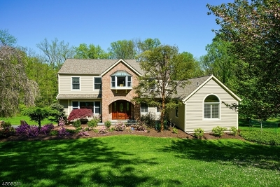 Chester Twp. NJ Single Family Home For Sale: $750,000