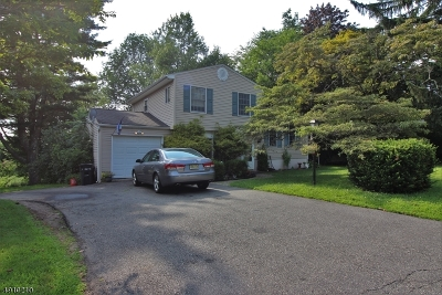 Stanhope Boro Single Family Home For Sale: 14 Young Dr