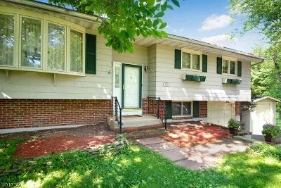 Hillsborough Twp. Single Family Home For Sale: 269 Hillsborough Rd