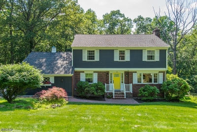 Morristown Town, Morris Twp. Single Family Home For Sale: 24 Dorothy Dr