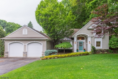 Wyckoff Twp. Single Family Home For Sale: 381 Monroe Ave