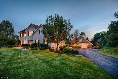 Bethlehem Twp. Single Family Home For Sale: 7 Kalan Farm Rd