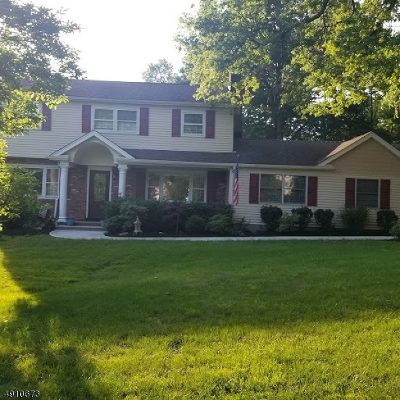 Bridgewater Twp. Single Family Home For Sale: 695 Birch Hill Dr