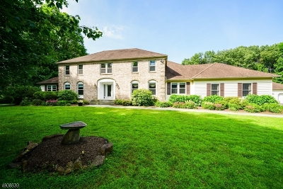 Chester Twp. NJ Single Family Home For Sale: $749,000