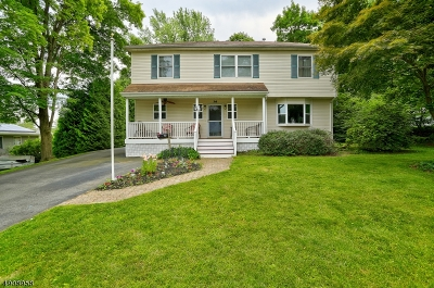 Parsippany-Troy Hills Twp. Single Family Home For Sale: 24 Springview Dr